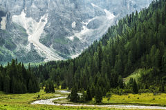 Forest and river in the valley, Dolomiti - Italy Stock Image