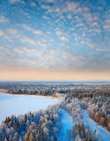 Forest river in winter Royalty Free Stock Photography