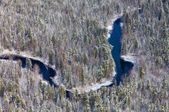 Forest river in winter, top view Stock Images