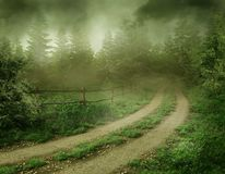 Forest road. Foggy landscape with a country road Royalty Free Stock Photography