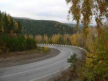 Forest road. In mountains near Krasnoyarsk, Russia royalty free stock images