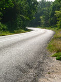Forest road. A curving road through a forest Royalty Free Stock Photo
