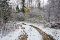 Forest road, covered with the first snow. Turn forest road, first covered with white snow royalty free stock photography