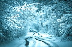 Forest road covered with snow. Magical snowy road. Christmas winter night. Fairy forest covered with snow Stock Photography
