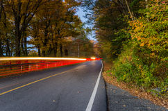 Forest Road at Dusk and Light Trails Royalty Free Stock Photo