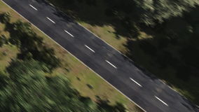 Forest Road. Flight over a road in the forest stock video footage