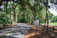 Forest Road, HHI photographie stock libre de droits