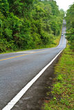 Forest road at Khaoyai National Park, Thailand Royalty Free Stock Photos