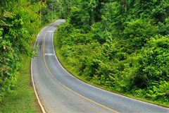 Forest road at Khaoyai National Park, Thailand Stock Photo
