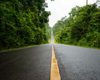 Forest road at Khaoyai National Park (The World Heritage of natu Royalty Free Stock Photo