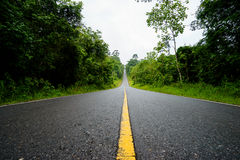 Forest road at Khaoyai National Park (The World Heritage of natu Stock Photo