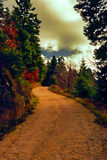Forest Road Landscape Painting Images stock