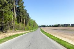Forest road. Landscape in summer asphalt road. on the left a mixed forest grows, on the right there is an agricultural field. blue sky over plants Royalty Free Stock Image