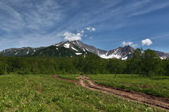 Forest road the mountains of Kamchatka Peninsula Stock Images