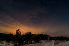 Forest road night snow stars. Night scene with christmas trees and the road in the winter forest on a background of stars and sky Stock Photos