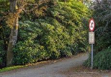 Forest Road For Pedestrians imagem de stock