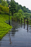 Forest road with a puddle of rain water Stock Photography
