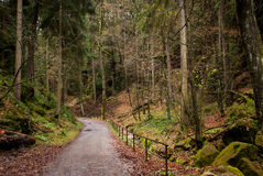 Forest road, Saxon Switzerland. Saxon Switzerland (German: Sächsische Schweiz) is a hilly climbing area and national park around the Elbe valley south-east of Royalty Free Stock Image