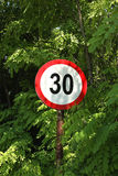 Forest road sign stock image
