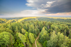 Forest with road sunset aerial dramatic sky Royalty Free Stock Images