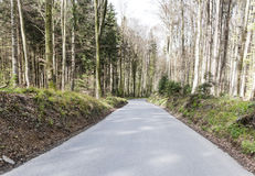 Forest road in Switzerland Stock Photo