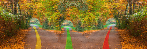 Forest road with three different ways Royalty Free Stock Photo