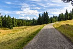 Free Forest Road To Orle Shelter In Jizera Mountains Royalty Free Stock Photography - 163433977
