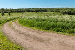 Road through the field. Forest road at Trinity monastery on Anzersky island, Arkhangelsk region, Russia royalty free stock photos
