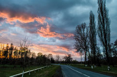 Forest Road Under Sunset Sunbeams. Beautiful sunset with orange and red clouds behind some coniferous trees. Close up. Azerbaijan,. Forest Road Under Sunset Royalty Free Stock Photo