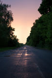 Forest road. In the village Royalty Free Stock Photo