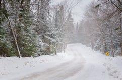Forest Road während eines Schneesturmes Stockfotos