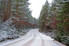 Forest Road In Winter. A road leading through the wintery forest. Photographed in Salo, Finland in December 2009 Stock Photo