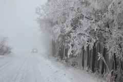 Forest road in winter. Forest road in the fog and snow in winter Stock Photo