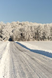Forest Road in Winter Time Stock Photos