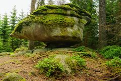 Forest and rock Royalty Free Stock Image
