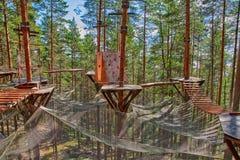 Forest Rope Park Challenge Fotografering för Bildbyråer