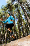 Forest running woman Stock Images