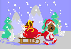 Forest Santa Claus 22 Stock Photo