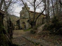 Forest in Santa Cristina de Ribas de Sil. Benedictine Monastery of Santa Cristina de Ribas de Sil. Ourense. Spain Royalty Free Stock Photo