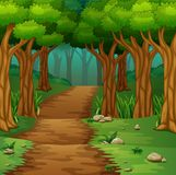 Forest scene with dirt road. Illustration of Forest scene with dirt road Royalty Free Stock Image