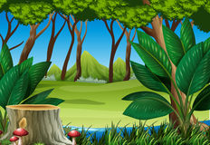 Forest scene with stump tree and mountains. Illustration Royalty Free Stock Images