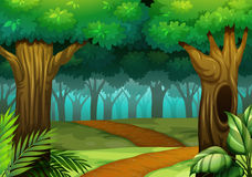 Forest scene with trail in the woods. Illustration Royalty Free Stock Image