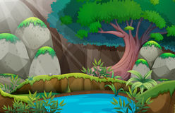 Forest scene with waterhole. Illustration Stock Images