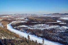 Forest Sea e pianura della neve Immagine Stock Libera da Diritti