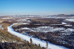 Forest Sea und Schnee-Ebene Lizenzfreies Stockbild