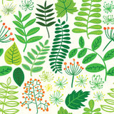 Forest seamless colorful pattern background leafs and berries light Stock Photography
