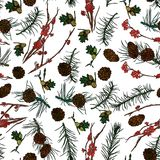 Forest seamless pattern. Forest seamless pattern with Mountain ash branches, pine cones and fir-tree branches.  Vector illustration. Typography design elements Stock Image