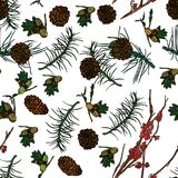 Forest seamless pattern. Forest seamless pattern with Mountain ash branches, pine cones and fir-tree branches.  Vector illustration. Typography design elements Stock Photography