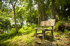 Forest Seat Stock Photo
