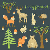 Forest set Stock Images